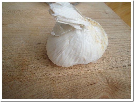 garlic for parasite infection
