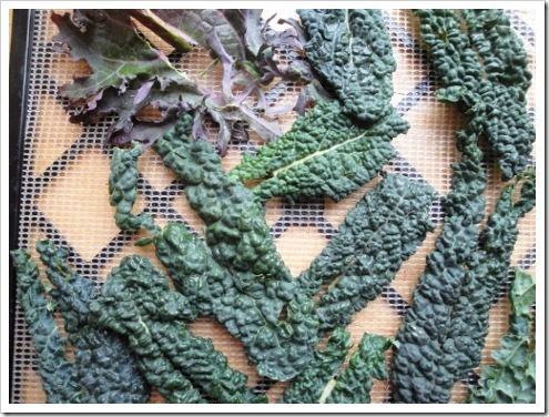 dehydrating greens (5) (475x356)