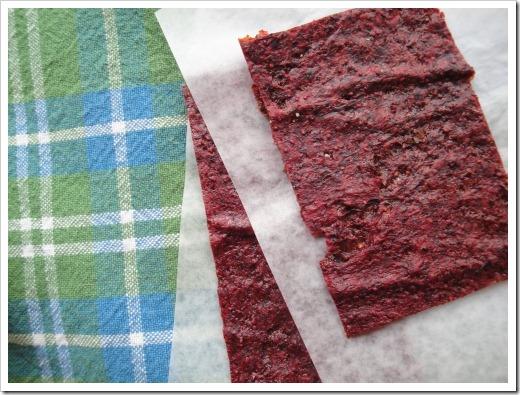 dried strawberry fruit rolls dehydrator (18) (500x375)