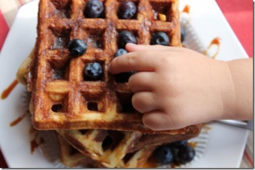 Grain-free Cashew Waffles (44) (500x333)