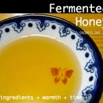 fermented-honey-graphic-150x150