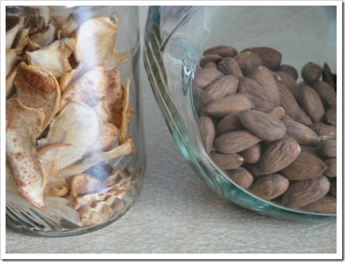 crispy nuts and apple chips from Mom for a visit (1) (475x356)