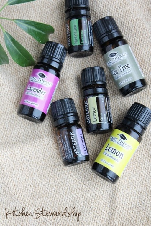 What essential oils to use as a natural remedy for itchy bug bites
