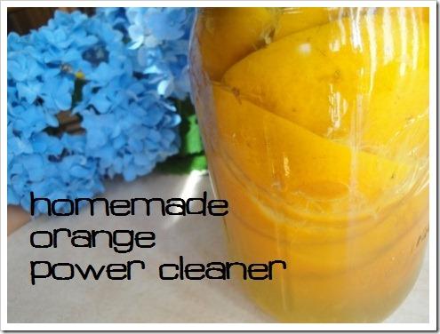 Homemade Orange Power Cleaner :: via Kitchen Stewardship