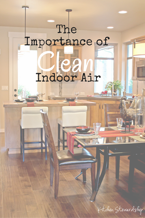 The Importance of Indoor Air Quality (3)