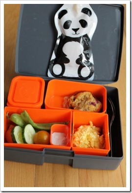 laptop lunch box (1) (317x475)