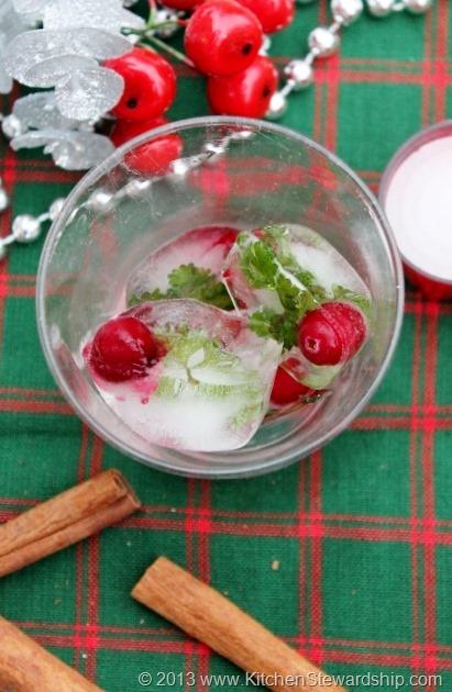 Healthy Christmas Party festive ice