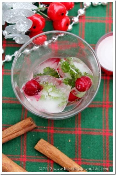 Festive Christmas Ice Cubes