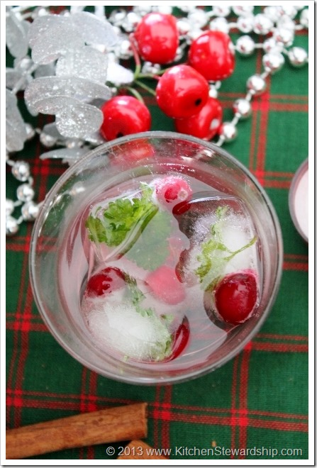 Festive Christmas Ice Cubes for a party
