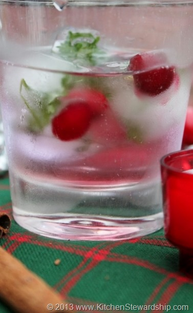 Festive Christmas Ice Cubes Healthy Party