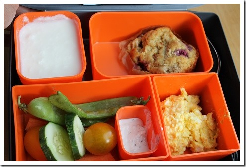 laptop lunch box (4)