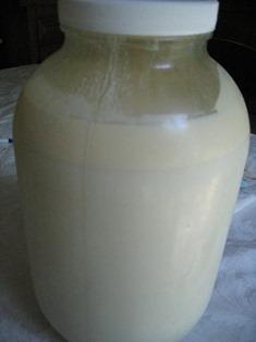 milk jar (2)