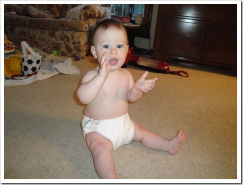 motherease AIO cloth diaper (4) (475x356)