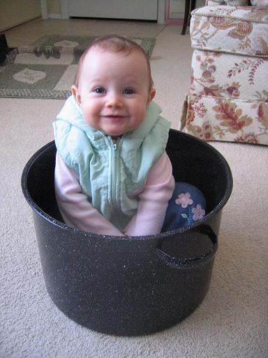 Exhibit A: Daughter-in-Pot