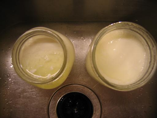 8-hour yogurt on the left, 16-hour on the right.  The 16-hour yogurt is a bit thicker, but not appreciably so.