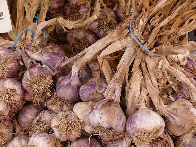 Garlic and Onions :: via Kitchen Stewardship