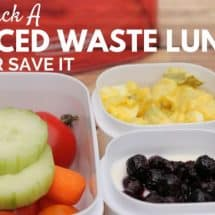 Packing a Reduced Waste Lunch