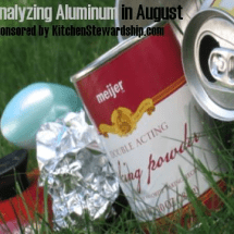 Monday Mission:  Analyzing Aluminum FOIL in August