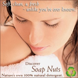 soap nuts natural soapnuts review