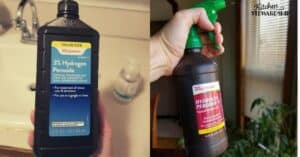 Hydrogen Peroxide used as an effective cleaner and disinfectant
