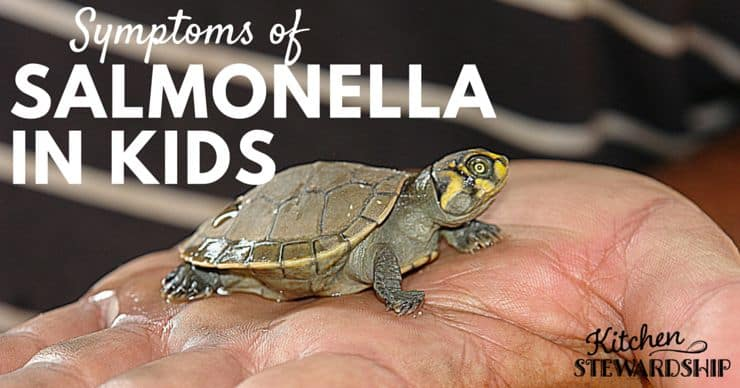 Do you Understand the Risks - Turtles, Salmonella and Young Children