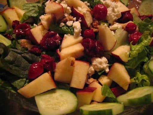 Healthy Balanced Homemade Dog Food Recipes