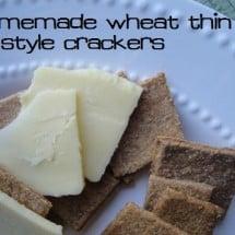Healthy Homemade Cracker Recipe, at Long Last!