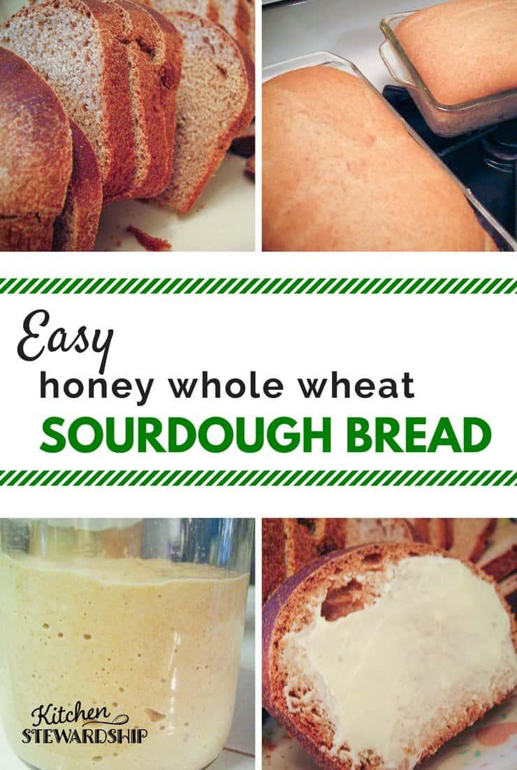 Honey Whole Wheat Sourdough Bread Recipe Easy