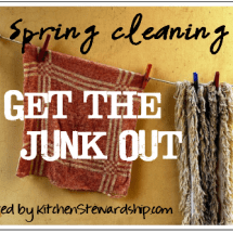 Spring Cleaning Carnival: Get Out the Debt!