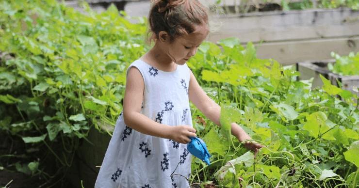 girl gardening weeds