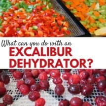 What can an Excalibur Dehydrator Do? {REVIEW}