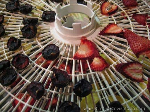 Dehydrating fruits is simple! (apples, bananas, strawberries, cranberries, cherries, and fruit rolls - simple and quick methods) Instructions and photos for home dehydration, including pre-treatment with citrus and steaming, food dehydrator times, and how to tell if dried food is done.
