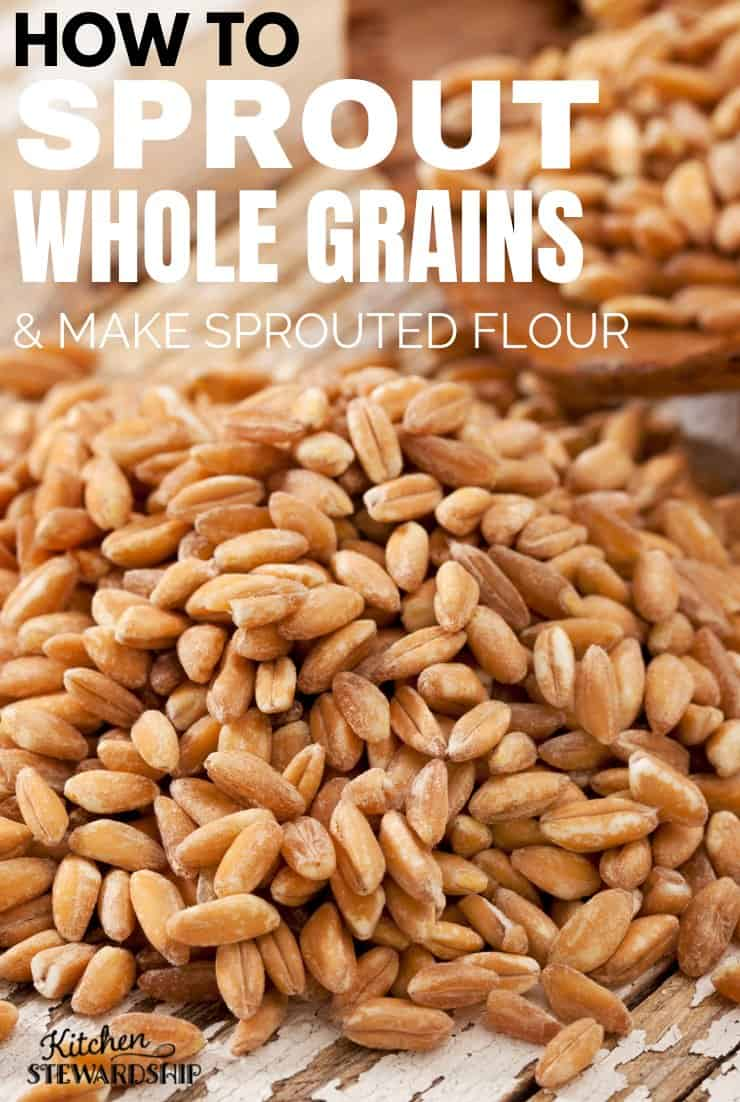 Using a dehydrator, you can soak and sprout whole wheat berries, dehydrate them, then grind into sprouted flour.