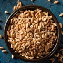 How to Sprout Whole Grains and Make Sprouted Flour in Bulk