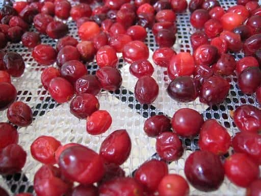 home dried cranberries