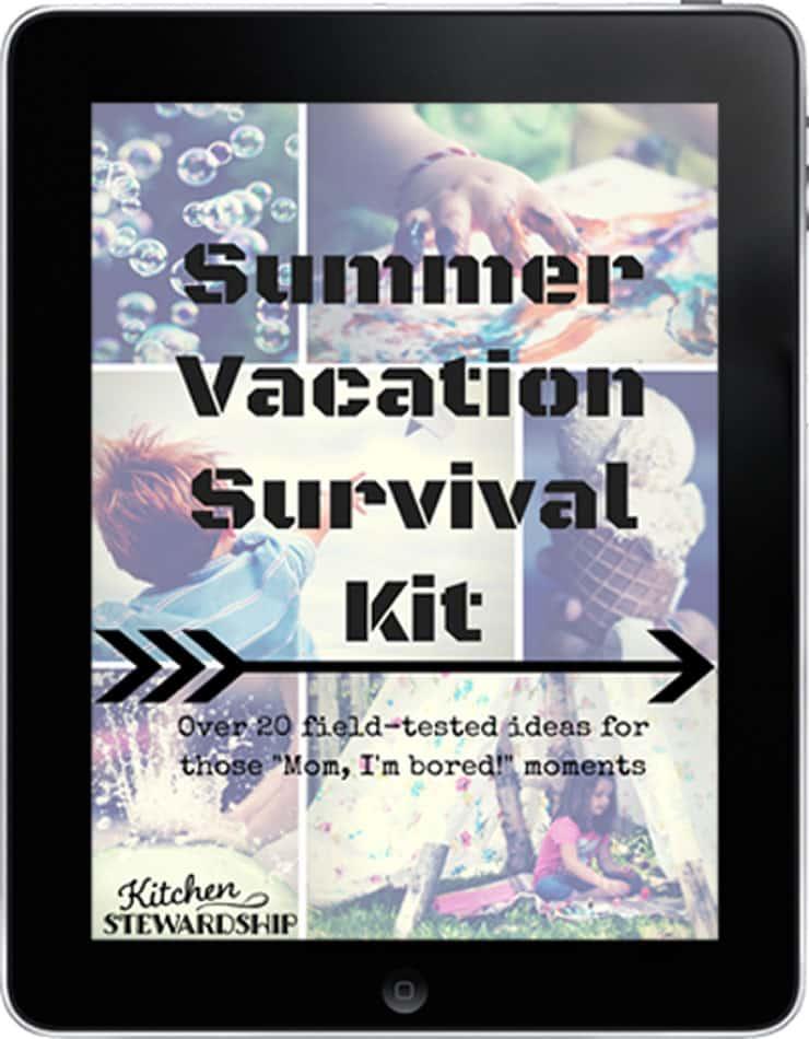 Summer Vacation Survival Kit iPad