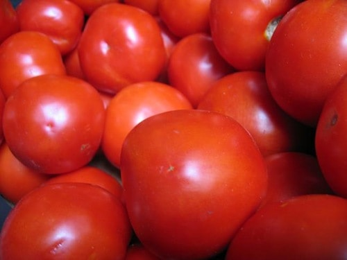 How to Easily Can Tomatoes with Step by Step Instructions