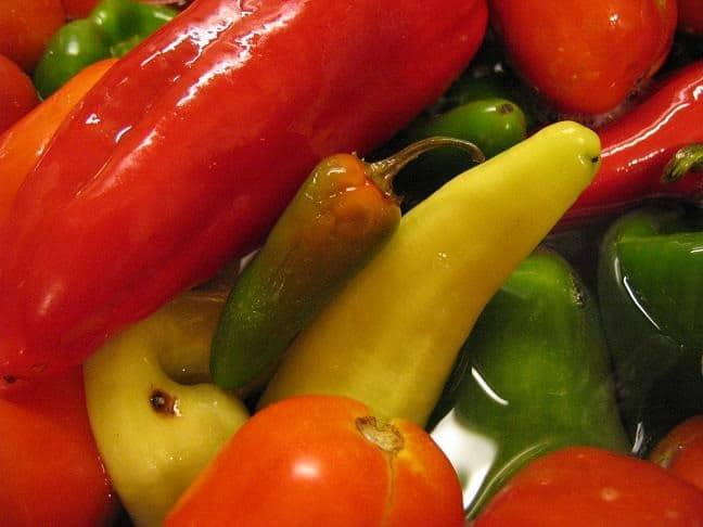 salsa canning (4)