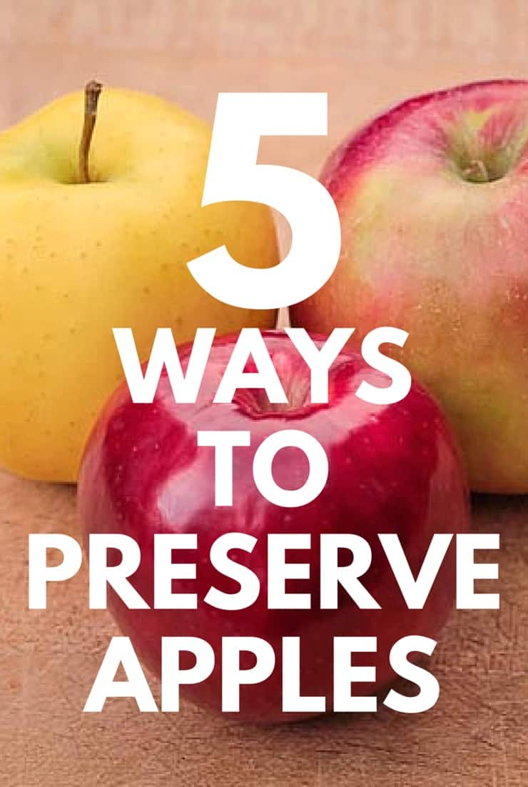 Preserve your apples with the freezer, dehydrator, canner, or oven... plus some real food apple recipes