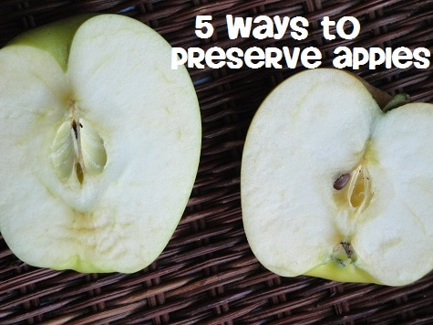 5 Ways to Preserve Your Apples