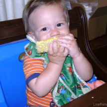 Feeding a Real Food Baby: Breast is Best…But Then What? {Guest Post from Emily at Live Renewed}