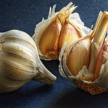 Garlic to make the sick bugs go away