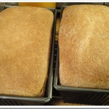 Seeking the Perfect Homemade Whole Wheat: Claudia's Bread (no. 3)