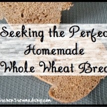 Seeking the Perfect Homemade Whole Wheat: Sweet and Simple (no. 1)