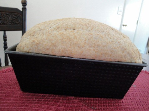 Tammy's soaked bread success (4) (475x356)