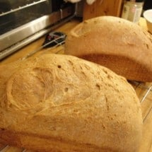 Seeking the Perfect Homemade Whole Wheat: Nourishing Traditions Soaked Buttermilk Bread (no. 7)