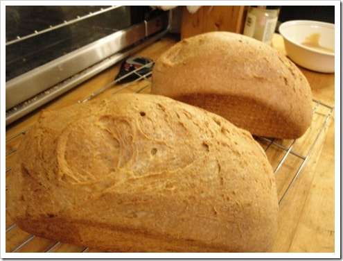 Food processor bread recipes