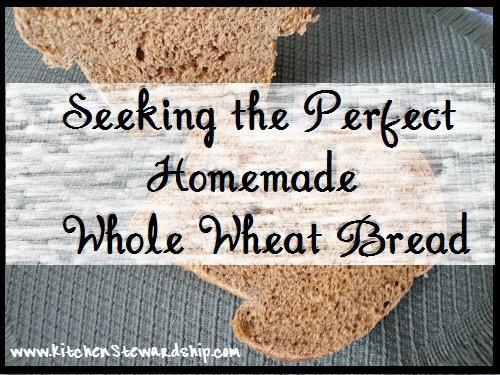 seeking perfect ww bread button2