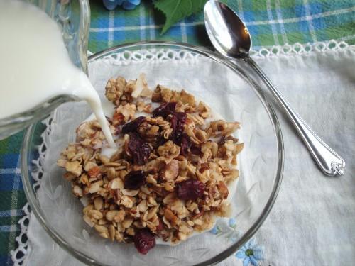 grain-free granola (3) (475x356)