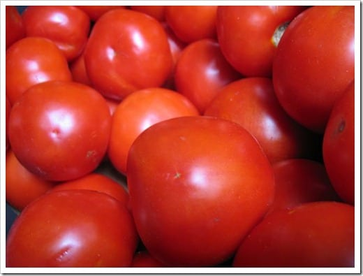 canning tomatoes (4)